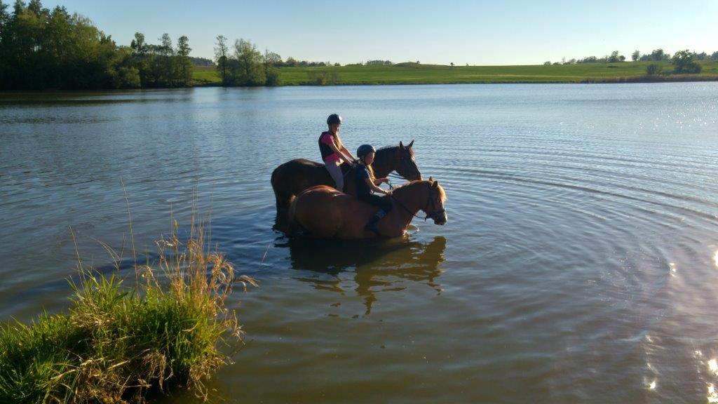 Plavání koní v Opatském rybníku ( Fangelika + Eliška, Vitea + Míša )